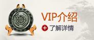 VIP介绍
